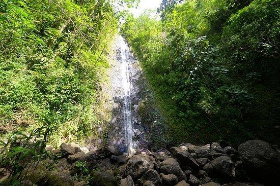 Hawaiian Waterfall Hike: Hawaiian Waterfall Hike