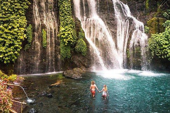 Bali Secret Waterfall Tour - Privat og...