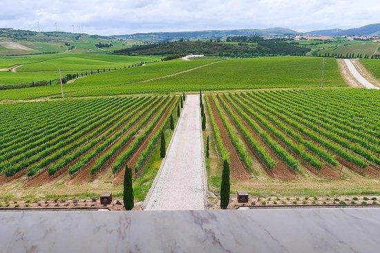 Visite privée: découverte des vins de...