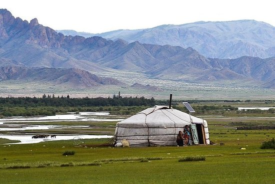 モンゴル中部のハイライト(21日、20泊)