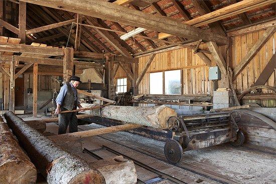 Chargement d'une bille de bois à la scierie hydraulique de Mandray