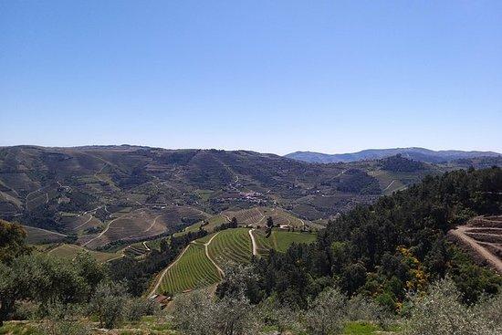 Douro Wine Tour - Wine Villages, Wine...