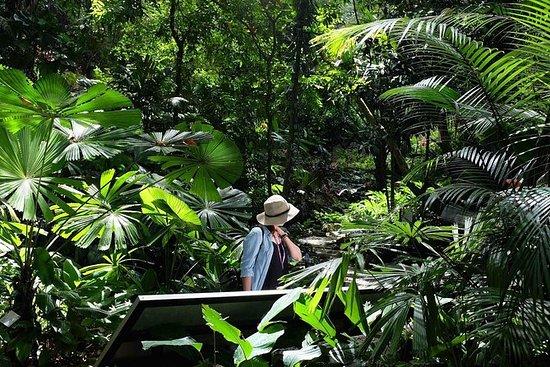 Penang Round Island Tour Con Jardín...