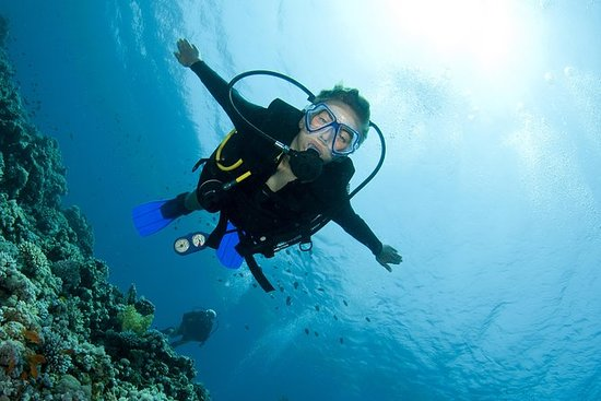Try Scuba Diving (for Beginners): Try Scuba Diving