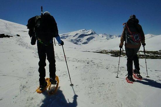 Mendoza: Caminhada com raquetes de...