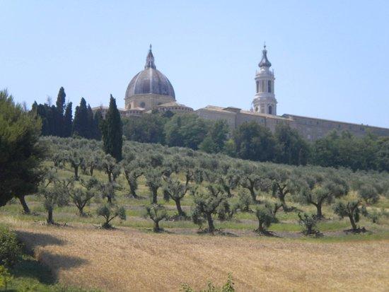 Veduta della Basilica della Madonna di Loreto