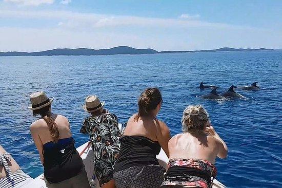 私人快艇遊覽赫瓦爾,布拉克島和帕克萊尼島