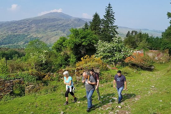 4小时隐藏的爱尔兰徒步旅行到Anu山脉的Paps