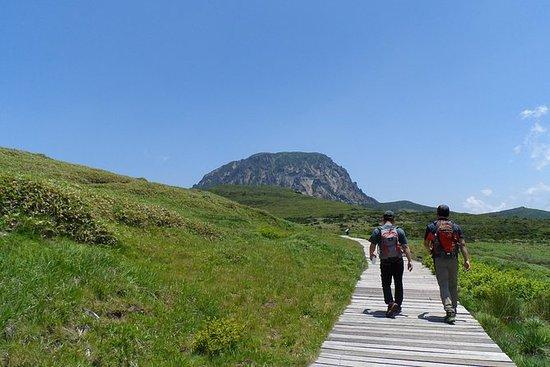 Off the Beaten Path - South Face of Hallasan Mountain