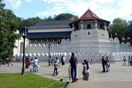 Kandy Pinnawala Private Day Tour fra...
