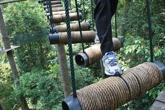 Skytrex Adventure in Sungai Congkak (with transfers) 사진