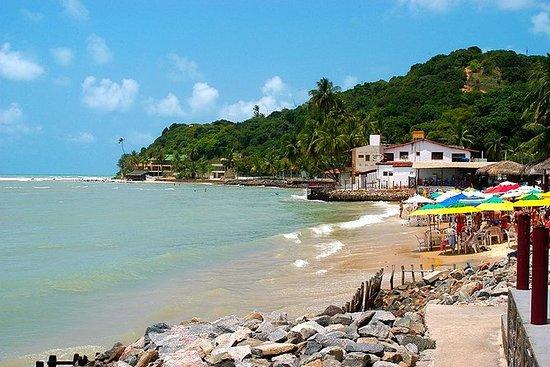Tour Praia da Pipa - Fra Natal