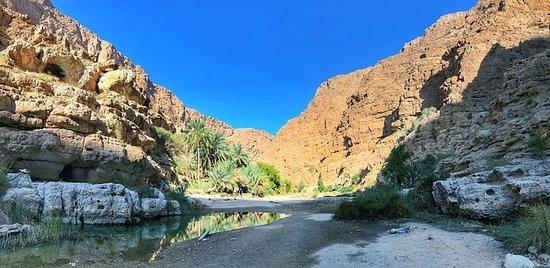 Giro di un giorno per il gruppo Wadi