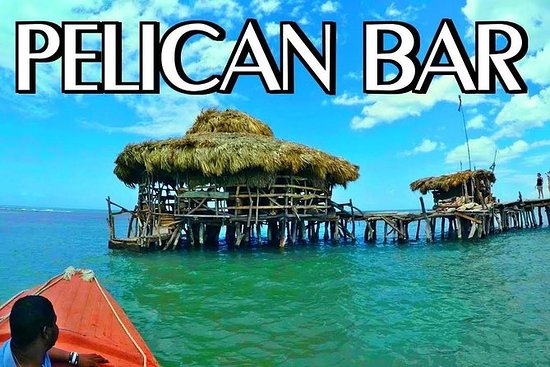 Floyds Pelican Bar Private Tour
