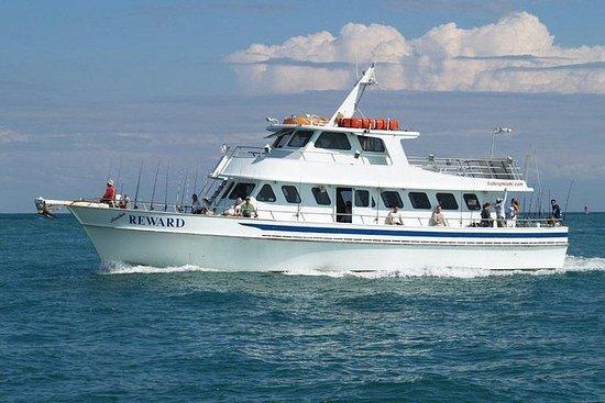 Halvdag Deep Sea Fishing Trip