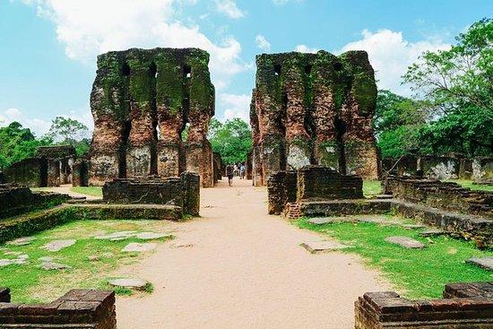 Full Day Tour til Sigiriya Rock...