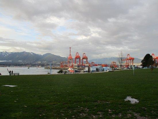 Crab Park View