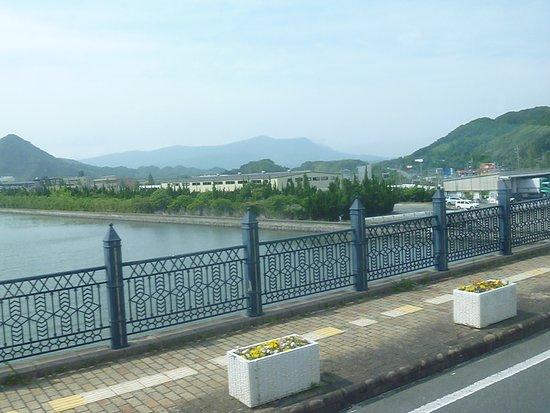 Hario Bridge