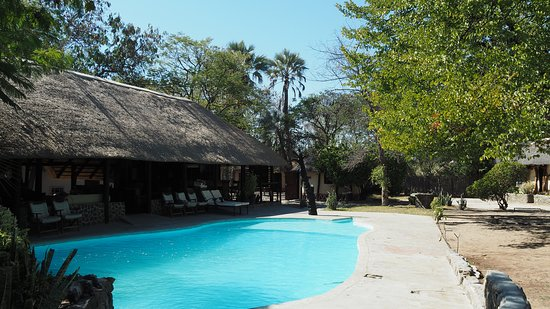 Gweta, Botsuana: プールとバー