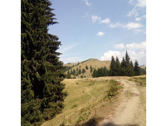 Berane Municipality, Montenegro: mokra mountain