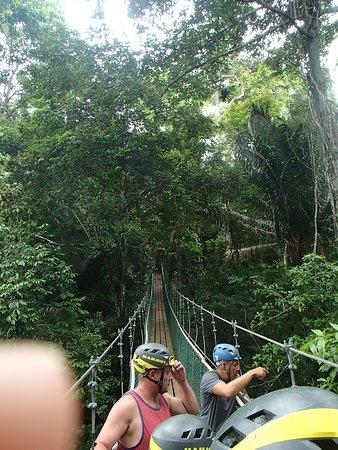 On the swinging bridge on the way to ziplines.