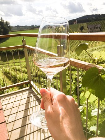 Ein Glas Wein mit Blick auf den Weingarten
