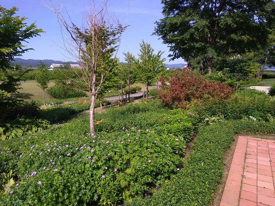 Asahikawa Kitasaito Garden: 自然豊か