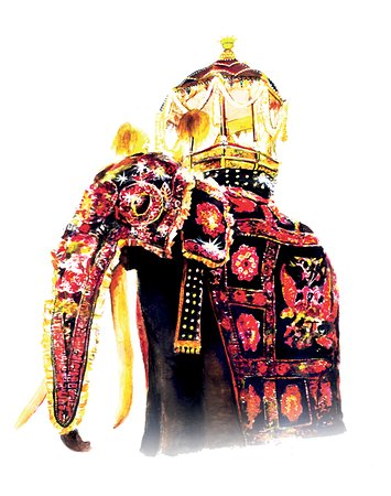 www.nishakulankaholidays  Upcoming event , Kandy esala perahara visit Nishaku lanka holidays