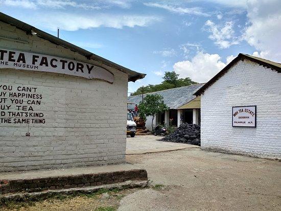 Wah Tea Estate: The factory buildings
