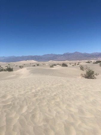 想像通りの砂漠