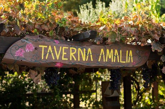 Taverna AMALIA!