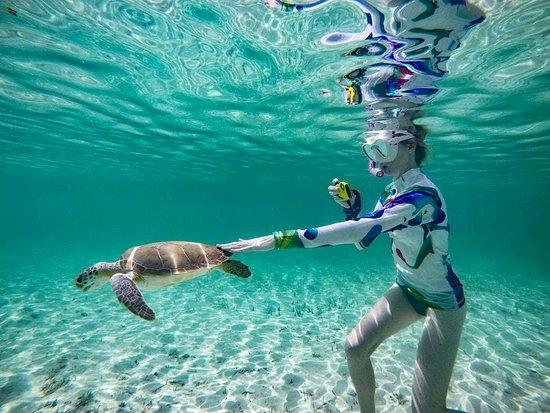 Foto de Tyman Fishing Charters