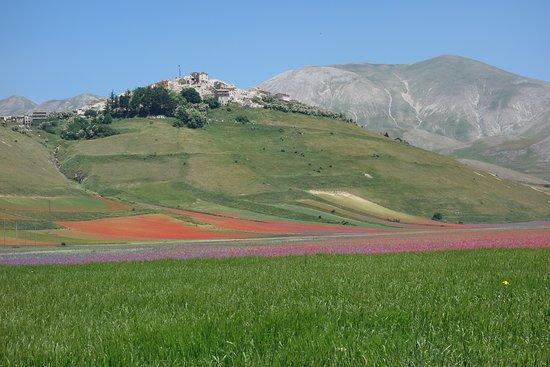 Кастелуччио-ди-Норчия, Италия: Quello che rimane di Castelluccio di norcia