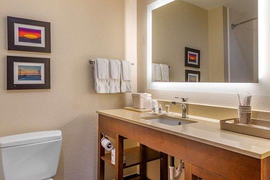 Comfort Suites Gateway: Bathroom
