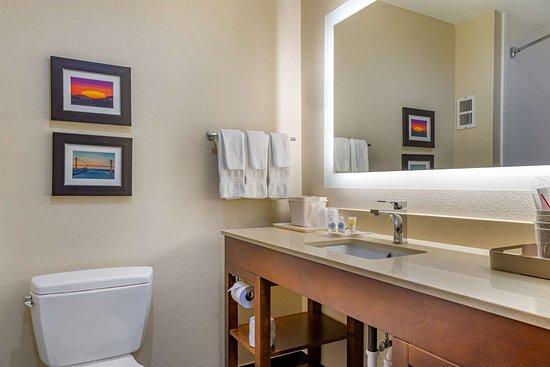Comfort Suites Gateway: Bathroom in guest room