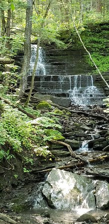 Pixley Falls State Park (Boonville) - 2020 All You Need to ... on sterling forest state park trail map, selkirk shores state park trail map, watkins glen state park trail map, saratoga spa state park trail map, hudson highlands state park trail map, green lakes state park trail map, buckhorn island state park trail map, connetquot river state park trail map, storm king state park trail map, nyack beach state park trail map,