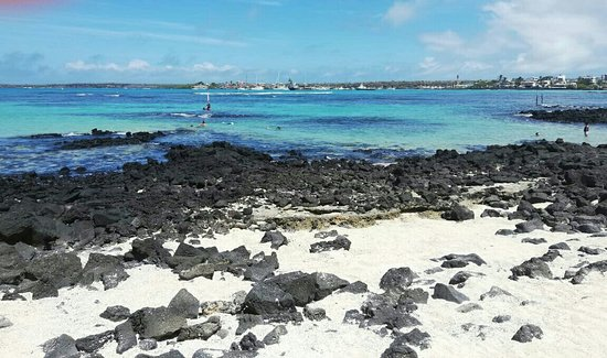 Playa de La Estacion
