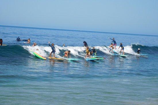 Laguna Beach Surf School