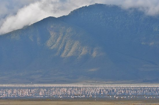 Ngorongoro Crater: flamingoes on a lake with the edge of the crater in the background