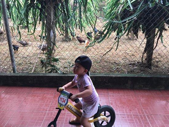 Dong Du Eco Farm Stays