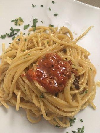 La Darsena da Ianuzzo: Spaghetti al riccio super, vino bianco freddo, il mare nel piatto! Siamo stati una sera di giugno a cena e abbiamo passato una serata meravigliosa! Il proprietario è un ristoratore bravissimo! Accogliente e preparato! Consigliatissimo