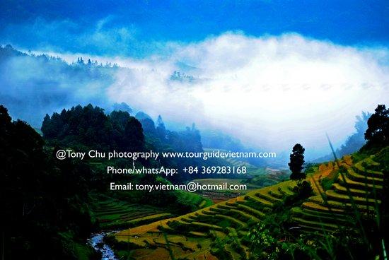 Tony Tours Vietnam