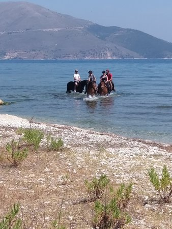 Kefalonia's Horse Riding Stable: 1