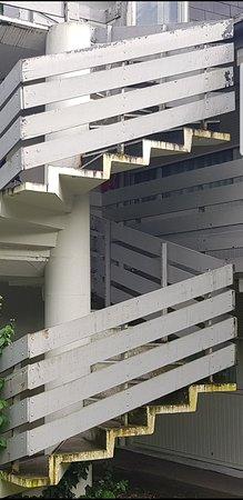 Saint-Etienne-du-Rouvray, ฝรั่งเศส: Escaliers recouvert de mousse! Ça mérite un bon coup de Karcher