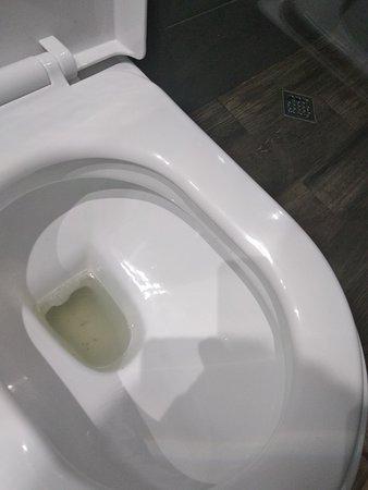 Effect Algara Beach Club Hotel: Туалет химией вообще не моют