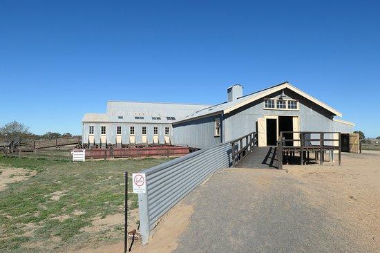 Shear Outback