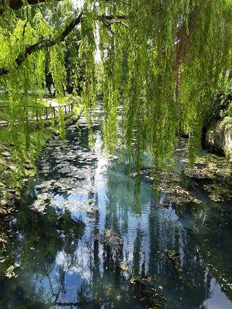 Giardini Salvi