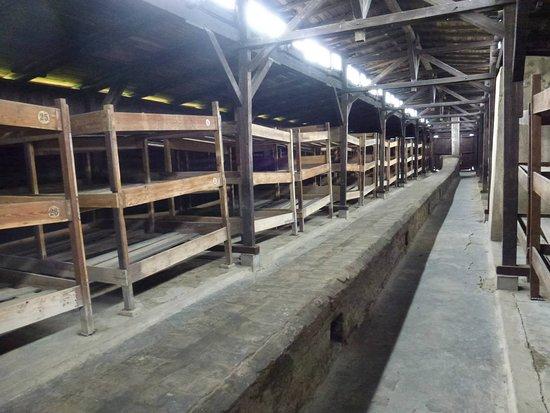 Poljska: Birkenau - Una camerata dormitorio del campo di concentramento