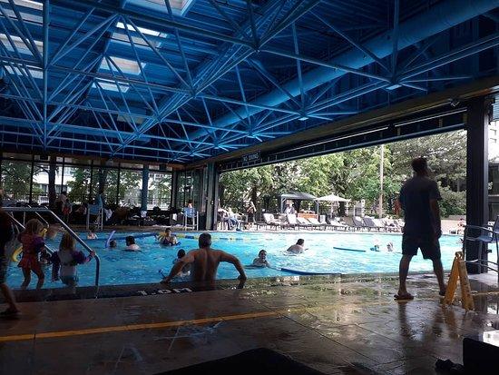 Sheraton Centre Toronto Hotel: The hotel pool