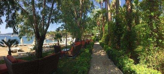 Joya Del Mar Boutique Hotel: Красота